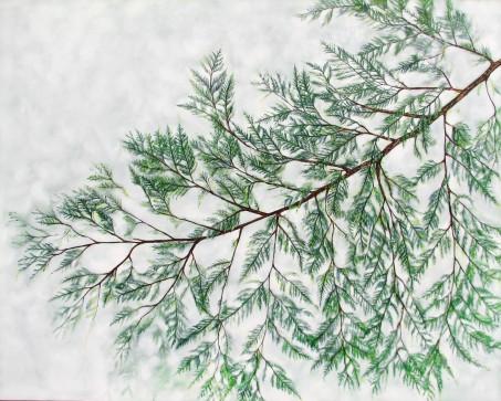 """New Cedar V. $1895. 60"""" x 48"""" Acrylic on canvas (#1268)"""